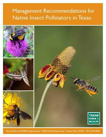 TPWD-Native-Pollinator-Management
